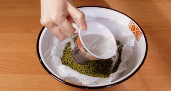 Как прорастить маш в домашних условиях для салата