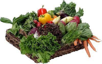 продукты разрешенные при высоком холестерине у женщин